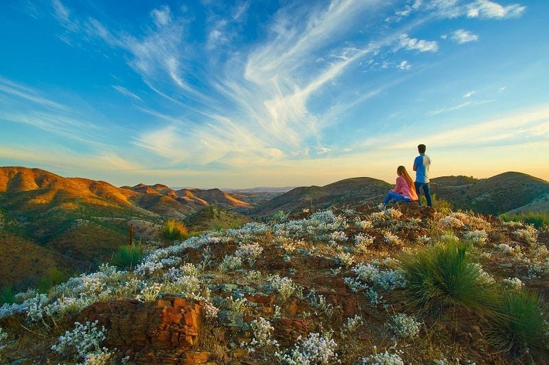 australie_south_australia_flinders_ranges_yacca_lookout_willow_springs_station_126235_satc