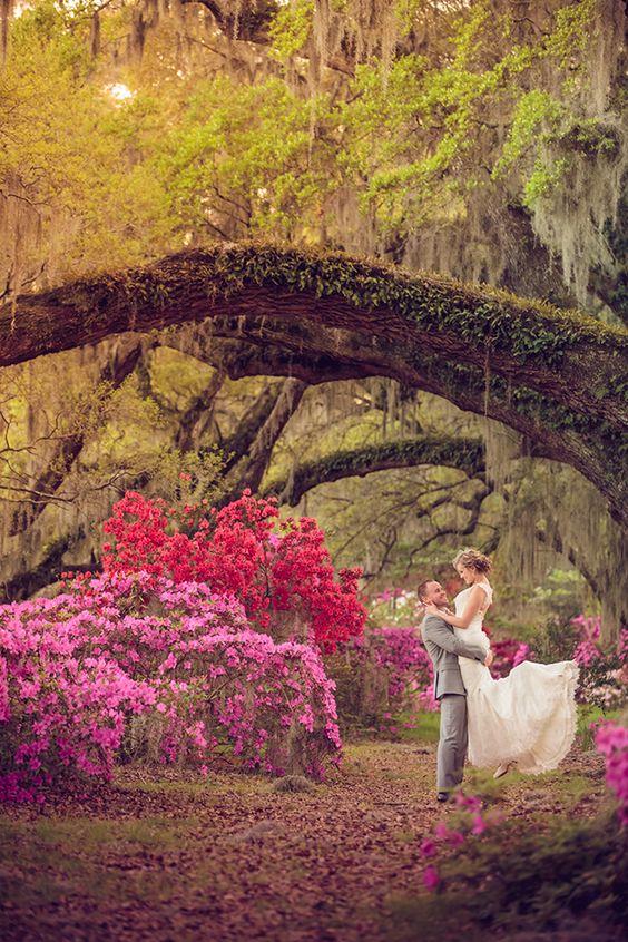 jeunes maries sous les fleurs et sous un arbre