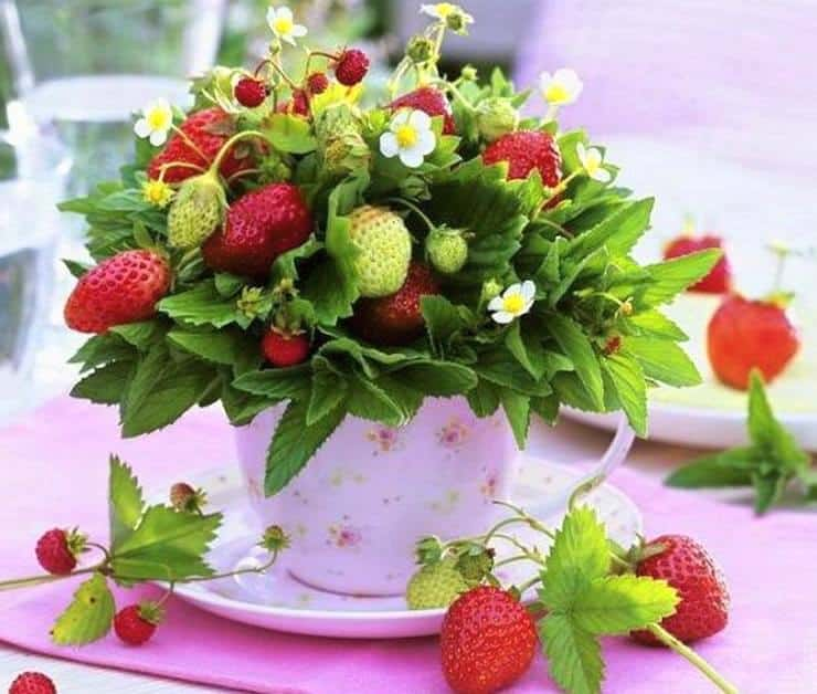 décoration de table fraise
