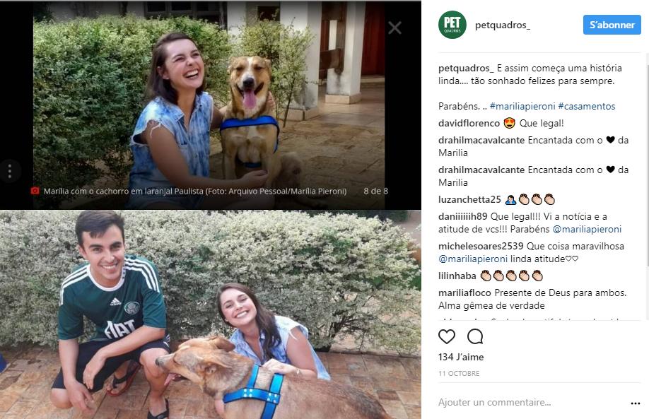 capture chien mariage