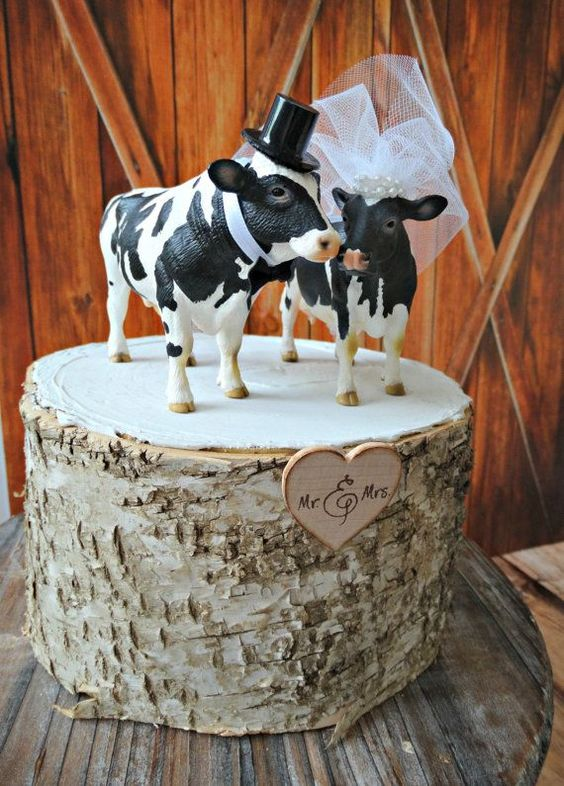 mariage made in normandie-déco-vaches
