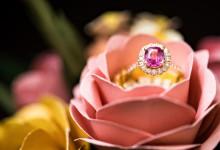 10 alliances bicolores où les couleurs se marient avec élégance