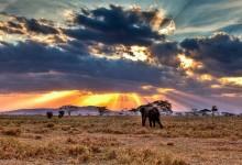 10 raisons de partir en Tanzanie pour vivre une lune de miel remplie d'aventures